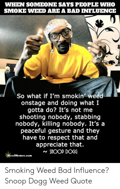 WHEN SOMEONE SAYS PEOPLE WHO SMOKE WEED ARE a BAD INFLUENCE So What