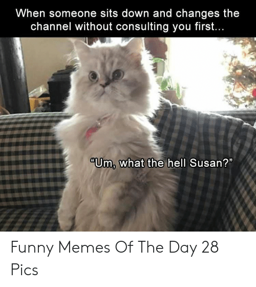 """Funny, Memes, and Hell: When someone sits down and changes the  channel without consulting you firsft.  """"Um, what the hell Susan? Funny Memes Of The Day 28 Pics"""