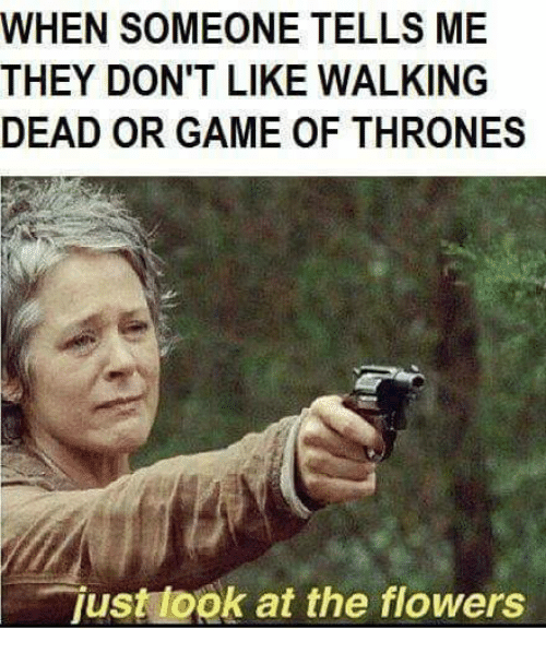 games of thrones: WHEN SOMEONE TELLS ME  THEY DON'T LIKE WALKING  DEAD OR GAME OF THRONES  just ook at the flowers
