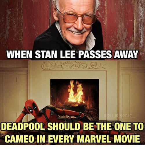 Stanning: WHEN STAN LEE PASSES AWAY  DEADPOOL SHOULD BE THE ONE TO  CAMEO IN EVERY MARVEL MOVIE