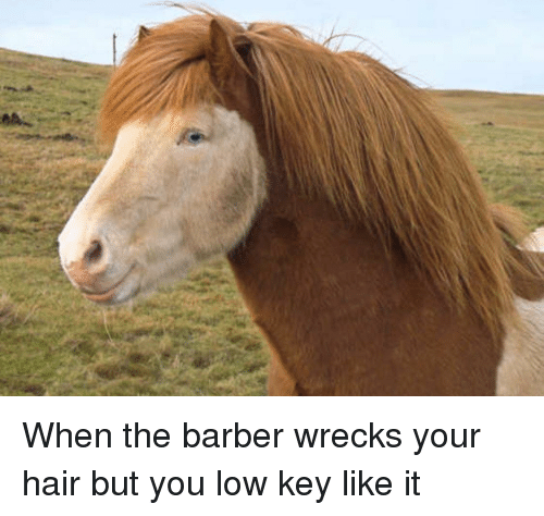 Barber, Low Key, and Hair: When the barber wrecks your hair but you low key like it