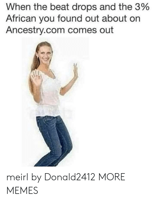 Dank, Memes, and Target: When the beat drops and the 3%  African you found out about on  Ancestry.com comes out meirl by Donald2412 MORE MEMES
