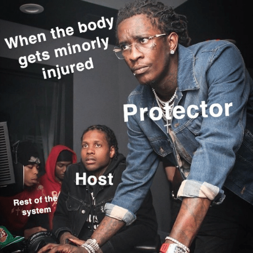 Rest, Host, and System: When the body  gets minorly  injured  Protector  Host  Rest of the  system