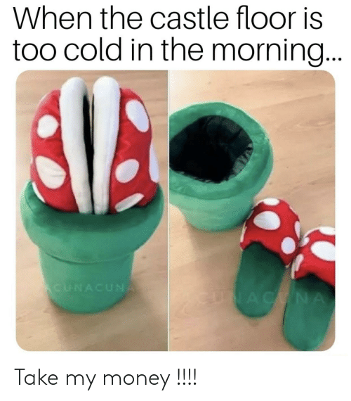 Money, Reddit, and Cold: When the castle floor is  too cold in the morning...  CUNACUNA  AC NA  E Take my money !!!!