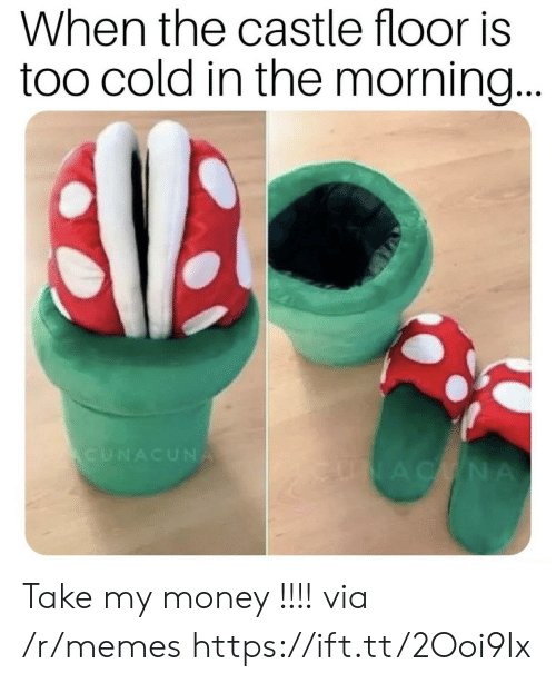 Memes, Money, and Cold: When the castle floor is  too cold in the morning...  CUNACUNA  ENACCNA Take my money !!!! via /r/memes https://ift.tt/2Ooi9Ix