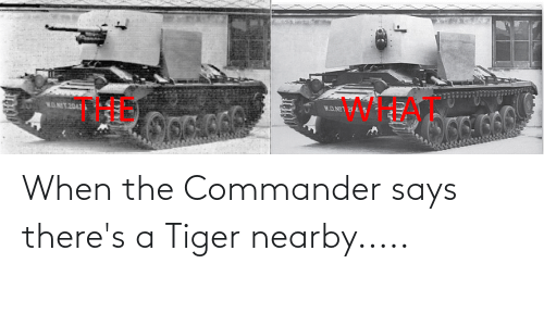 the commander: When the Commander says there's a Tiger nearby.....