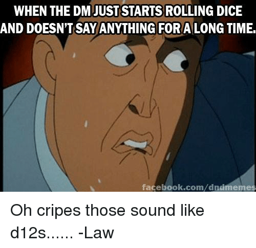 Facebook, Dice, and facebook.com: WHEN THE DM JUST STARTS ROLLING DICE  AND DOESN'T SAY ANYTHING FORA LONG TIME.  facebook.com/dnimemes Oh cripes those sound like d12s......  -Law