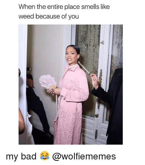 Because of You: When the entire place smells like  weed because of you my bad 😂 @wolfiememes