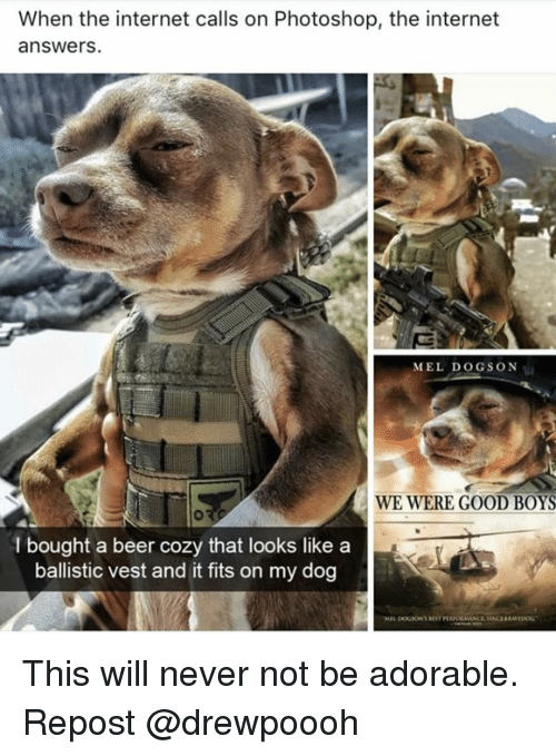 Beer, Internet, and Memes: When the internet calls on Photoshop, the internet  answers.  MEL DOGSON  WE WERE GOOD BOYS  l bought a beer cozy that looks like a  ballistic vest and it fits on my dog This will never not be adorable. Repost @drewpoooh