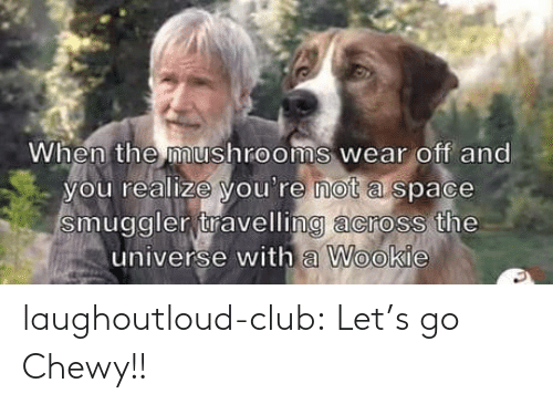 the universe: When the mushrooms wear off and  you realize you're not a space  smuggler travelling across the  universe with a Wookie laughoutloud-club:  Let's go Chewy!!