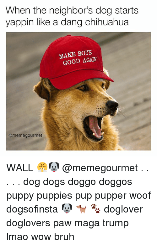 Bruh, Chihuahua, and Dogs: When the neighbor's dog starts  yappin like a dang chihuahua  MAKE BOYS  GOOD AGAIN  @meme gourmet WALL 😤🐶 @memegourmet . . . . . dog dogs doggo doggos puppy puppies pup pupper woof dogsofinsta 🐶 🐕 🐾 doglover doglovers paw maga trump lmao wow bruh