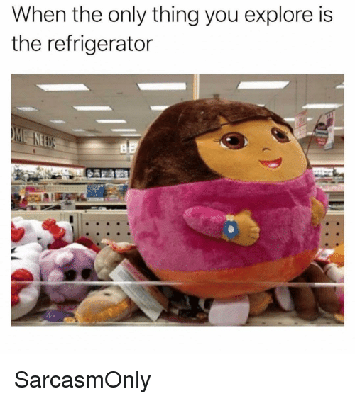 Funny, Memes, and Refrigerator: When the only thing you explore is  the refrigerator SarcasmOnly
