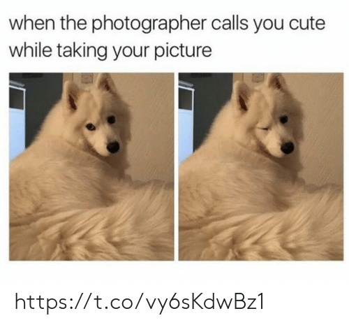 photographer: when the photographer calls you cute  while taking your picture https://t.co/vy6sKdwBz1