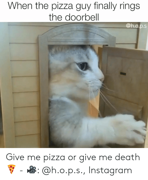 Instagram, Memes, and Pizza: When the pizza guy finally rings  the doorbell  @h.o.p.s Give me pizza or give me death 🍕 - 🎥: @h.o.p.s., Instagram