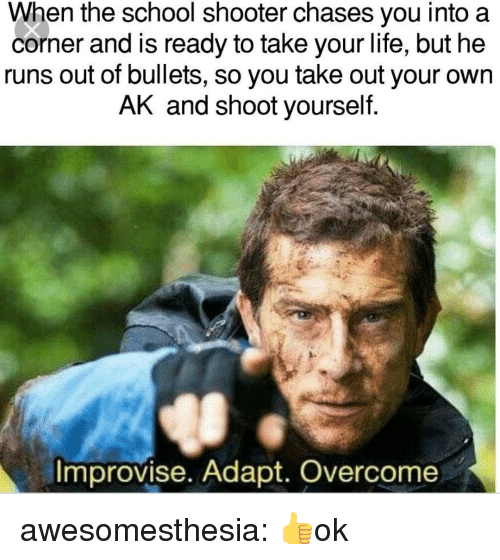 School Shooter: When the school shooter chases you into a  corner and is ready to take your life, but he  runs out of bullets, so you take out your own  AK and shoot yourself  Improvise. Adapt. Overcome awesomesthesia:  👍ok