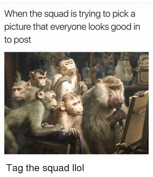 Funny, Squad, and Good: When the squad is trying to pick a  picture that everyone looks good in  to post Tag the squad llol