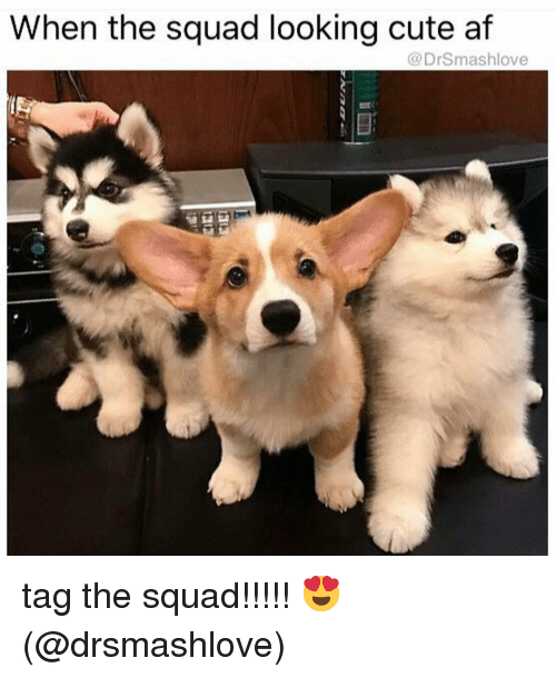 Cute AF: When the squad looking cute af  @DrSmashlove tag the squad!!!!! 😍 (@drsmashlove)