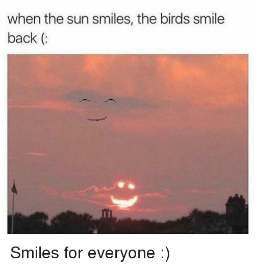 Birds, Smile, and Smiles: when the sun smiles, the birds smile  back (: Smiles for everyone :)