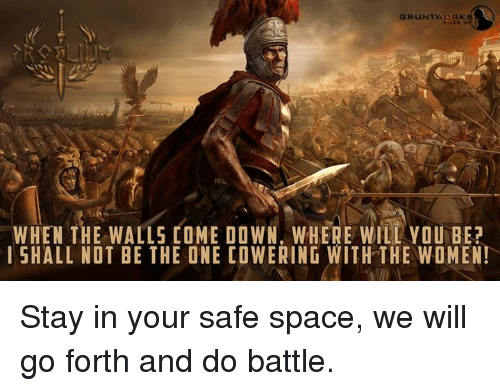 Memes, Space, and 🤖: WHEN THE WALLS COME DOWN, WHERE WILL YOU BE?  l SHALL NOT BE THE ONE COWERING WITH THE WOMEN! Stay in your safe space, we will go forth and do battle.