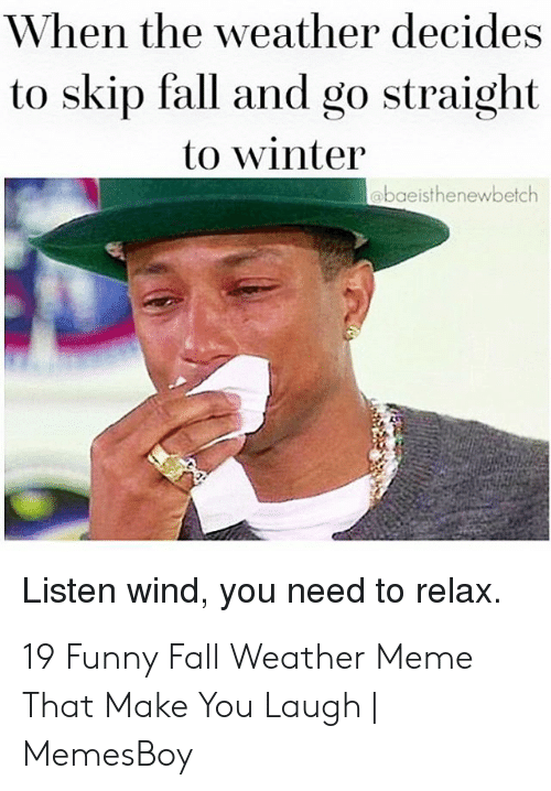 Memesboy: When the weather decides  to skip fall and go straight  to winter  abaeisthenewbetch  Listen wind, you need to relax. 19 Funny Fall Weather Meme That Make You Laugh | MemesBoy