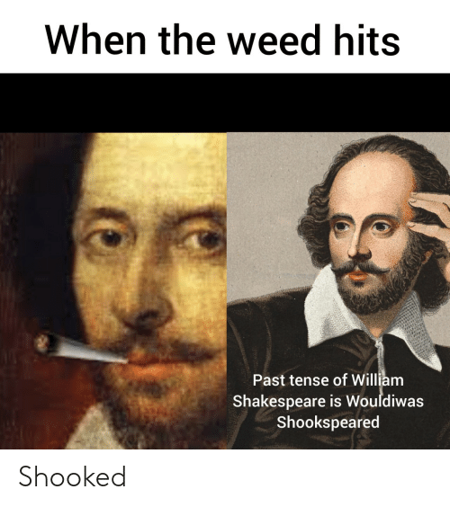 Tense: When the weed hits  Past tense of William  Shakespeare is Wouldiwas  Shookspeared Shooked