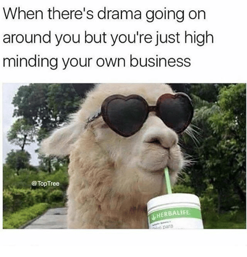 Memes, Business, and Herbalife: When there's drama going or  around you but you're just high  minding your own business  @TopTree  HERBALIFE