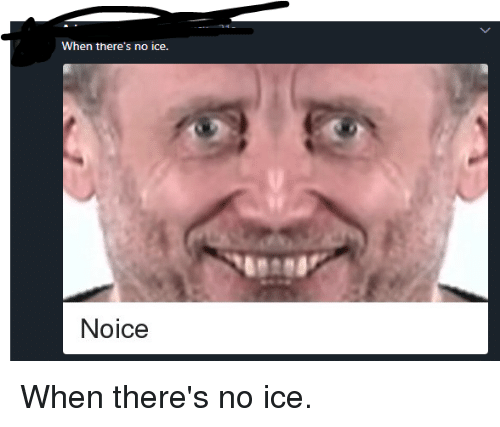 when there s no ice noice funny meme on