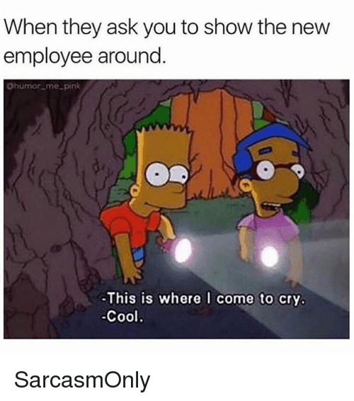 Funny, Memes, and Cool: When they ask you to show the new  employee around  Chumor_me pink  This is where l come to cry.  Cool SarcasmOnly