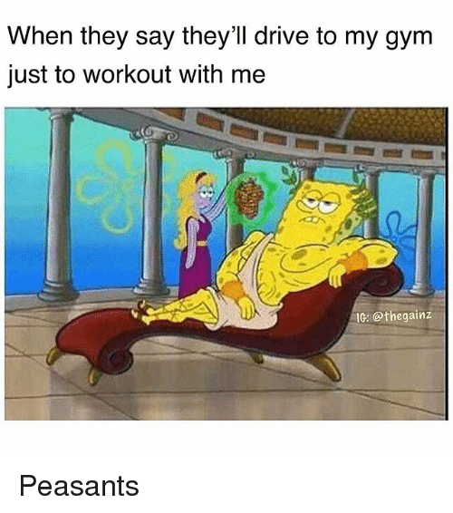 Gym, Memes, and Drive: When they say they'll drive to my gym  just to workout with me  IG: @thegainz Peasants