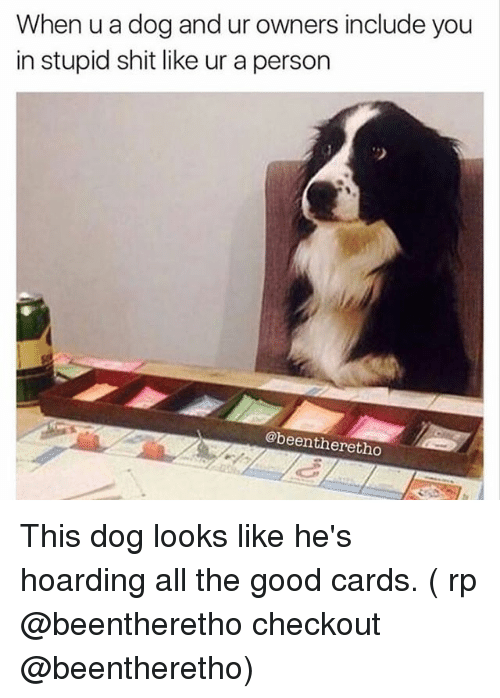 hoarding: When u a dog and ur owners include you  in stupid shit like ur a person  2  @beentheretho This dog looks like he's hoarding all the good cards. ( rp @beentheretho checkout @beentheretho)