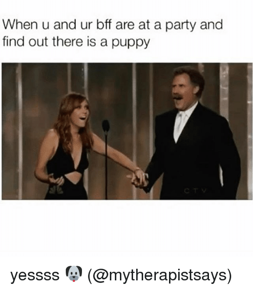 Memes, Party, and Puppy: When u and ur bff are at a party and  find out there is a puppy yessss 🐶 (@mytherapistsays)