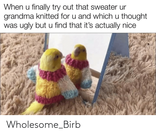 when u: When u finally try out that sweater ur  grandma knitted for u and which u thought  was ugly but u find that it's actually nice Wholesome_Birb