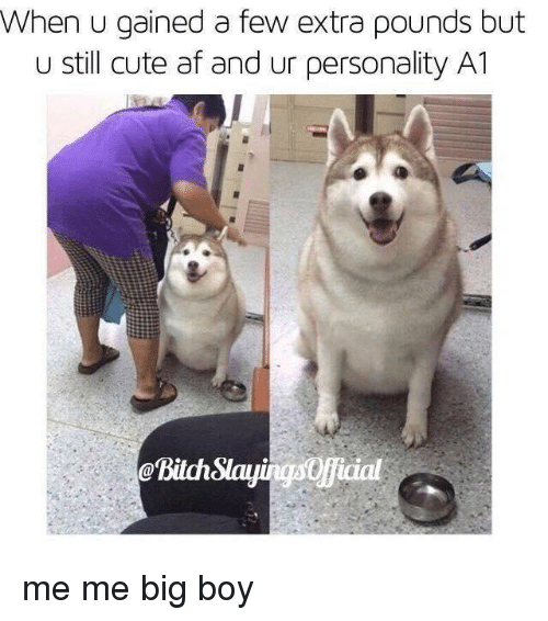Af, Bitch, and Cute: When u gained a few extra pounds but  u still cute af and ur personality A1  aslayingsopicial  @Bitch me me big boy
