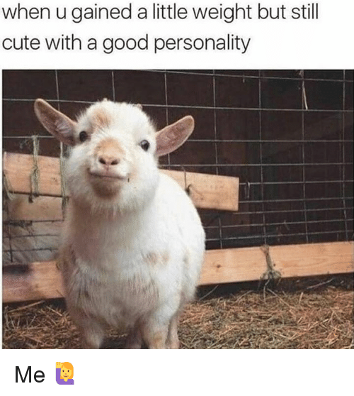 Cute, Good, and Personality: when u gained a little weight but still  cute with a good personality Me 🙋♀️