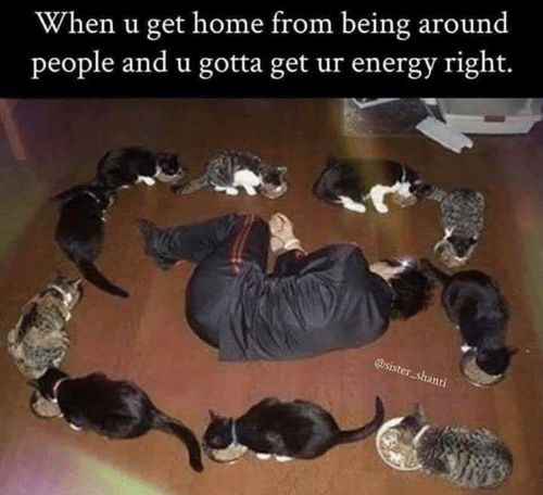 Energy, Memes, and Home: When u get home from being around  people and u gotta get ur energy right.  @sister shanti