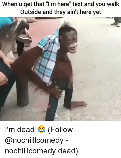 """Memes, Text, and 🤖: When u get that """"I'm here"""" text and you walk  Outside and they ain't here yet I'm dead!😂 (Follow @nochilllcomedy - nochilllcomedy dead)"""