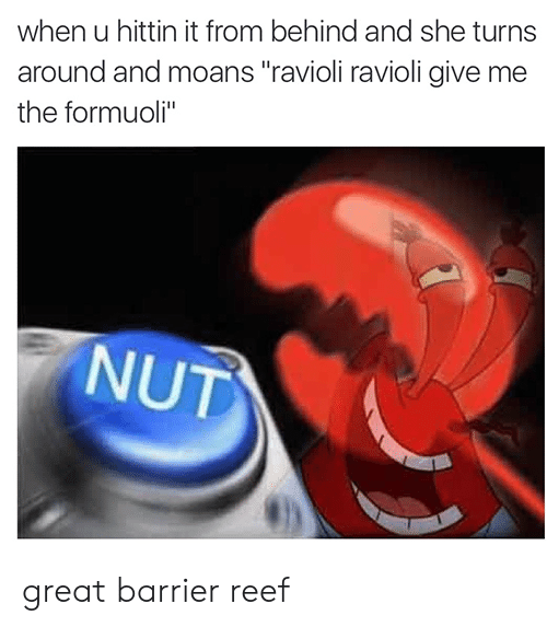 "She, Reef, and Great Barrier Reef: when u hittin it from behind and she turns  around and moans ""ravioli ravioli give mee  the formuoli""  NUT great barrier reef"