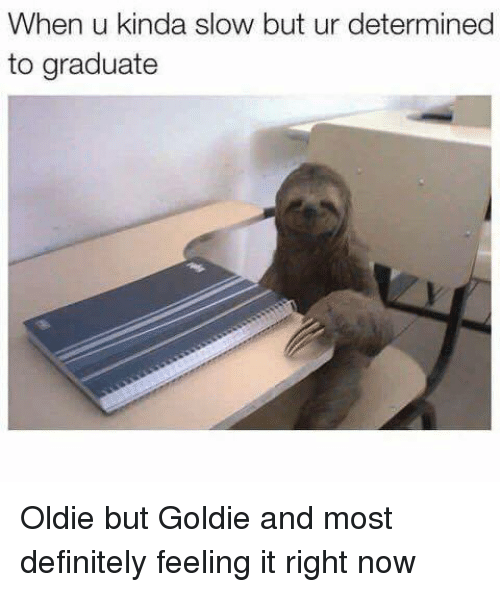 feeling-it: When u kinda slow but ur determined  to graduate Oldie but Goldie and most definitely feeling it right now