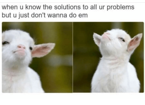 Funny, All, and Solutions: when u know the solutions to all ur problems  but u just don't wanna do em
