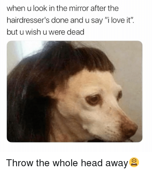"""Head, Love, and Mirror: when u look in the mirror after the  hairdresser's done and u say """"i love it"""".  but u wish u were dead Throw the whole head away😩"""
