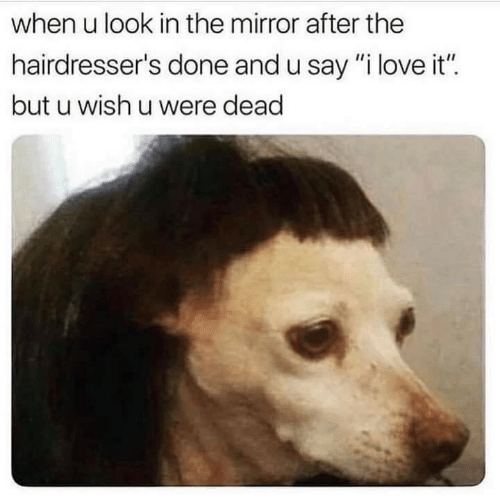 "Love, Mirror, and The Mirror: when u look in the mirror after the  hairdresser's done and u say ""i love it""  but u wish u were dead"
