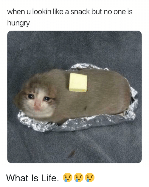 Hungry, Life, and What Is: when u lookin like a snack but no one is  hungry What Is Life. 😢😢😢