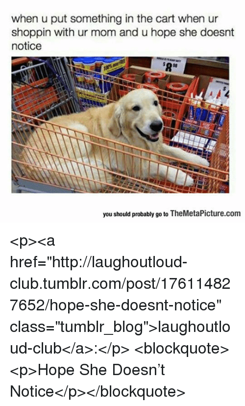 """Club, Tumblr, and Blog: when u put something in the cart when ur  shoppin with ur mom and u hope she doesnt  notice  $8  you should probably go to TheMetaPicture.com <p><a href=""""http://laughoutloud-club.tumblr.com/post/176114827652/hope-she-doesnt-notice"""" class=""""tumblr_blog"""">laughoutloud-club</a>:</p>  <blockquote><p>Hope She Doesn't Notice</p></blockquote>"""
