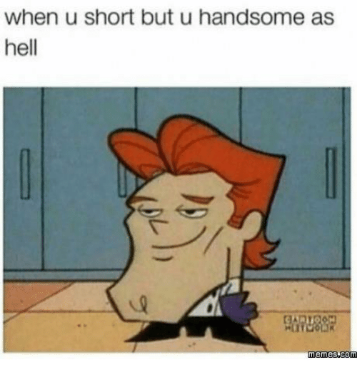 Hell Meme: When u Short but u handsome as  hell  memes.com