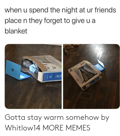 edt: when u spend the night at ur friends  place n they forget to give u a  blanket  EDT  LEDTV Gotta stay warm somehow by Whitlow14 MORE MEMES