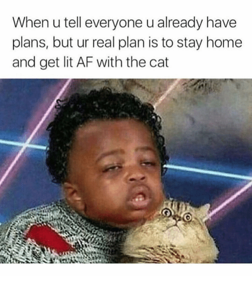 Lit AF: When u tell everyone u already have  plans, but ur real plan is to stay home  and get lit AF with the cat