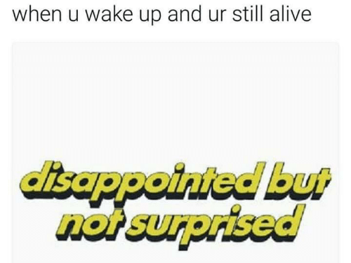 Alive, Wake, and Still: when u wake up and ur still alive  isappointed but  not surprised