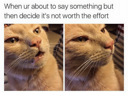 Memes, 🤖, and Not Worth the Effort: When ur about to say something but  then decide it's not worth the effort