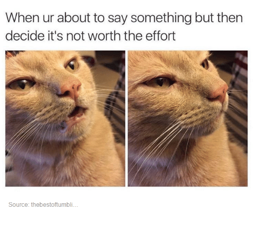 Funny, Tumblr, and Not Worth the Effort: When ur about to say something but then  decide it's not worth the effort  Source: thebestoftumbli.