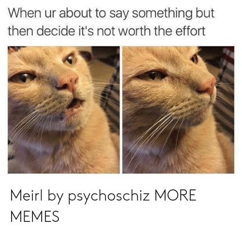 Dank, Memes, and Target: When ur about to say something but  then decide it's not worth the effort Meirl by psychoschiz MORE MEMES